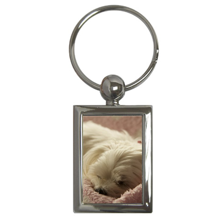 Maltese Sleeping Key Chains (Rectangle)