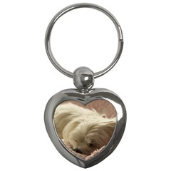 Maltese Sleeping Key Chains (Heart)