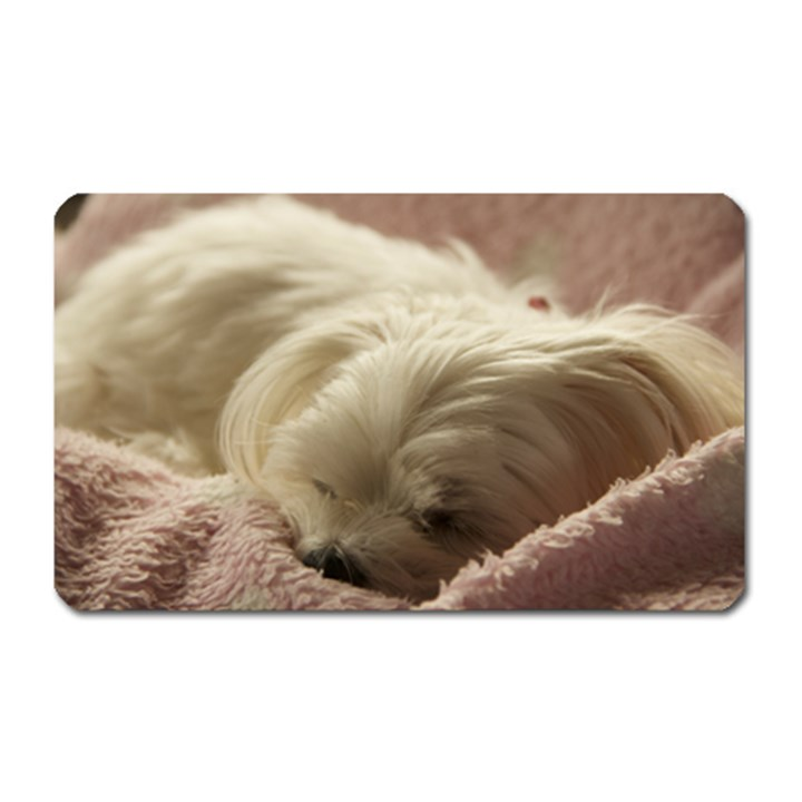 Maltese Sleeping Magnet (Rectangular)