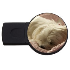 Maltese Sleeping USB Flash Drive Round (2 GB)