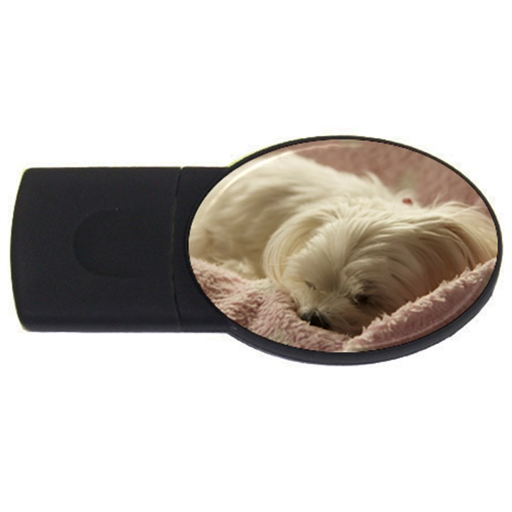 Maltese Sleeping USB Flash Drive Oval (2 GB)
