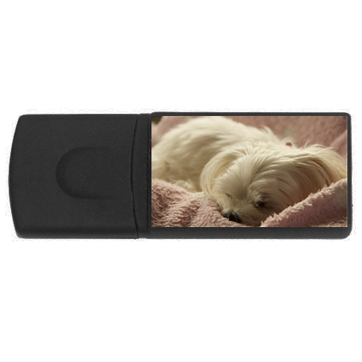 Maltese Sleeping USB Flash Drive Rectangular (1 GB)
