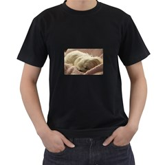 Maltese Sleeping Men s T-Shirt (Black) (Two Sided)