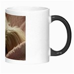 Maltese Sleeping Morph Mugs Right