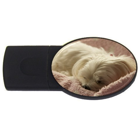Maltese Sleeping USB Flash Drive Oval (4 GB)