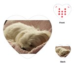 Maltese Sleeping Playing Cards (Heart)  Front