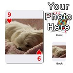 Maltese Sleeping Playing Cards 54 Designs  Front - Heart9