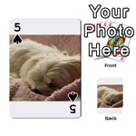 Maltese Sleeping Playing Cards 54 Designs  Front - Spade5