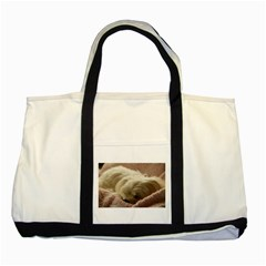 Maltese Sleeping Two Tone Tote Bag