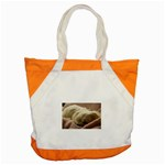 Maltese Sleeping Accent Tote Bag Front