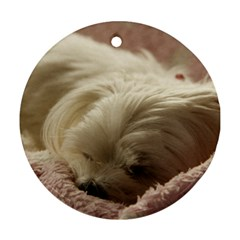 Maltese Sleeping Round Ornament (Two Sides)