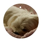 Maltese Sleeping Round Ornament (Two Sides)  Front