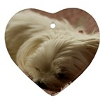 Maltese Sleeping Heart Ornament (2 Sides) Front
