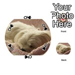 Maltese Sleeping Playing Cards 54 (Round)  Front - SpadeQ