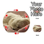 Maltese Sleeping Playing Cards 54 (Round)  Front - Heart3