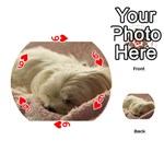 Maltese Sleeping Playing Cards 54 (Round)  Front - Heart6