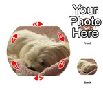 Maltese Sleeping Playing Cards 54 (Round)  Front - HeartA