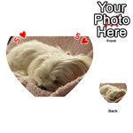 Maltese Sleeping Playing Cards 54 (Heart)  Front - Heart5