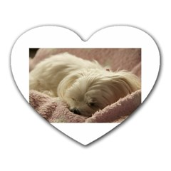Maltese Sleeping Heart Mousepads