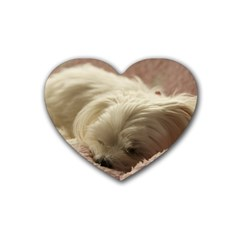 Maltese Sleeping Rubber Coaster (Heart)