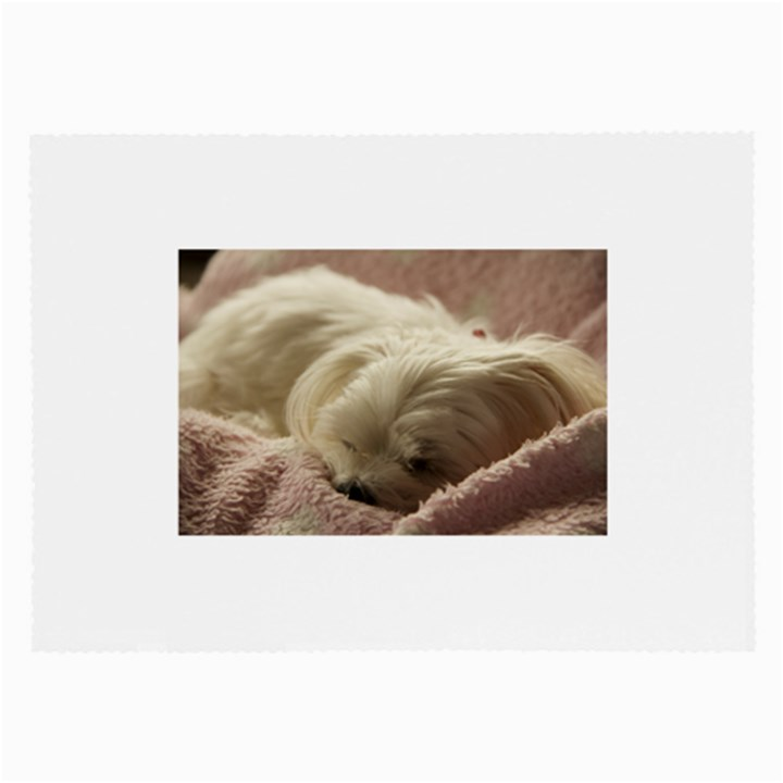 Maltese Sleeping Large Glasses Cloth