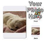 Maltese Sleeping Multi-purpose Cards (Rectangle)  Back 1