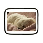 Maltese Sleeping Netbook Case (Small)  Front