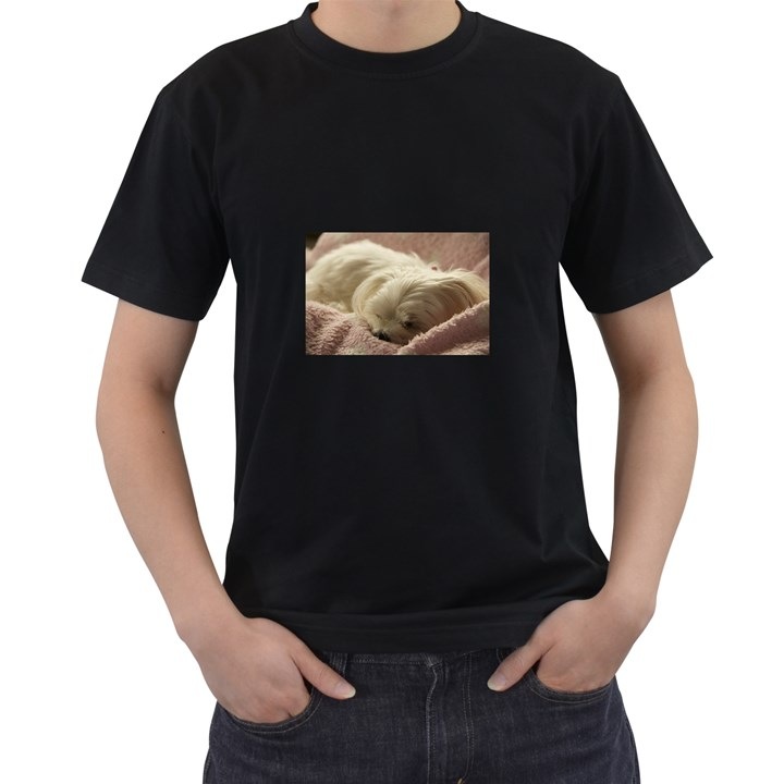 Maltese Sleeping Men s T-Shirt (Black)