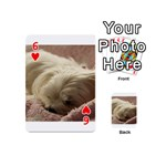 Maltese Sleeping Playing Cards 54 (Mini)  Front - Heart6