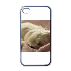 Maltese Sleeping Apple iPhone 4 Case (Black)