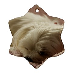 Maltese Sleeping Ornament (Snowflake)
