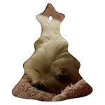 Maltese Sleeping Ornament (Christmas Tree) Front