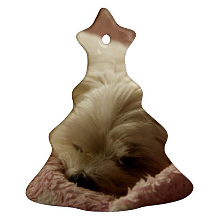 Maltese Sleeping Ornament (Christmas Tree)