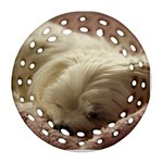 Maltese Sleeping Round Filigree Ornament (2Side) Back