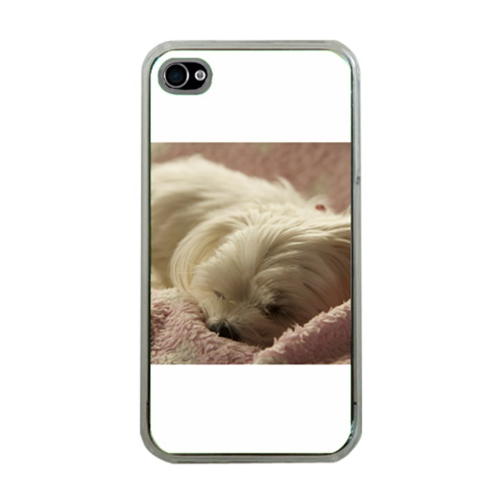 Maltese Sleeping Apple iPhone 4 Case (Clear)