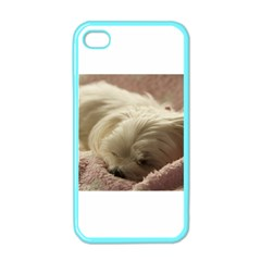 Maltese Sleeping Apple iPhone 4 Case (Color)