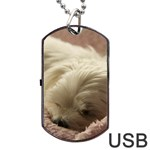 Maltese Sleeping Dog Tag USB Flash (Two Sides)  Front