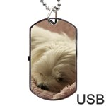 Maltese Sleeping Dog Tag USB Flash (Two Sides)  Back