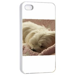 Maltese Sleeping Apple iPhone 4/4s Seamless Case (White)