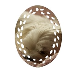 Maltese Sleeping Oval Filigree Ornament (2-Side)