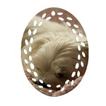Maltese Sleeping Oval Filigree Ornament (2-Side)  Back