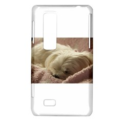Maltese Sleeping LG Optimus Thrill 4G P925