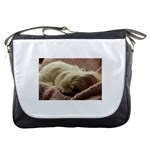 Maltese Sleeping Messenger Bags Front