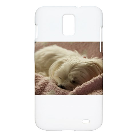 Maltese Sleeping Samsung Galaxy S II Skyrocket Hardshell Case