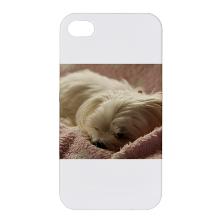 Maltese Sleeping Apple iPhone 4/4S Premium Hardshell Case