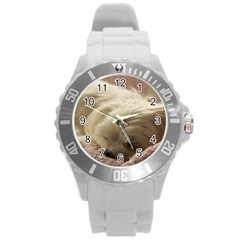Maltese Sleeping Round Plastic Sport Watch (L)