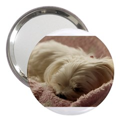 Maltese Sleeping 3  Handbag Mirrors