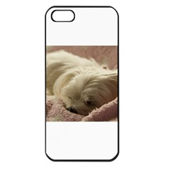 Maltese Sleeping Apple Iphone 5 Seamless Case (black)