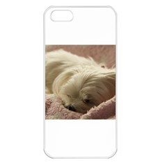 Maltese Sleeping Apple iPhone 5 Seamless Case (White)