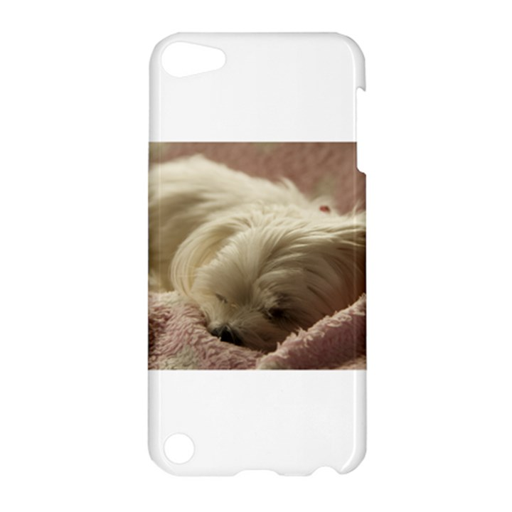 Maltese Sleeping Apple iPod Touch 5 Hardshell Case